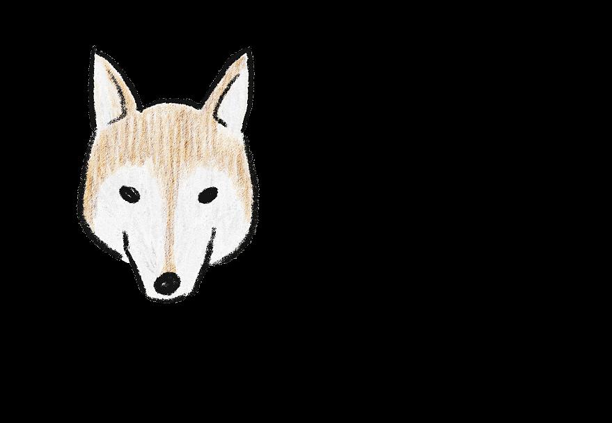犬のお顔(イラスト)