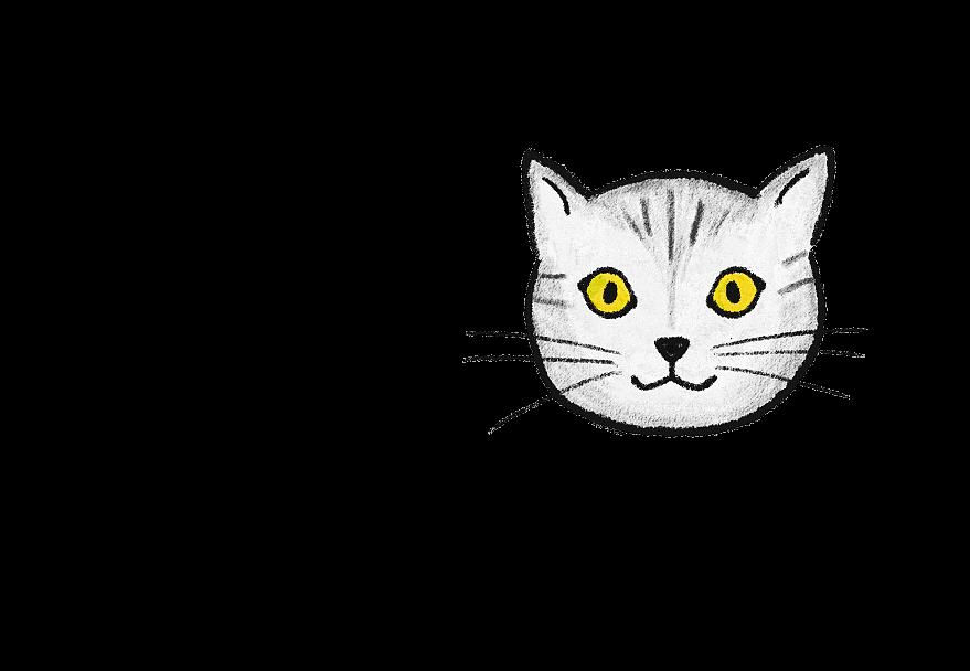 猫のお顔(イラスト)