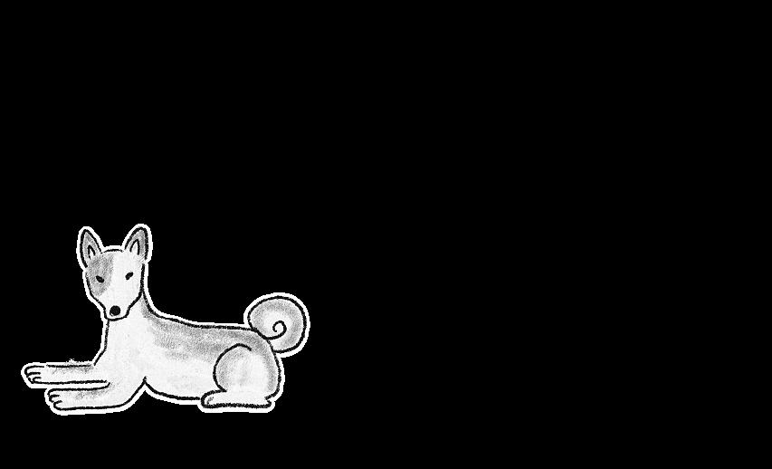 安中動物病院についてイラスト03