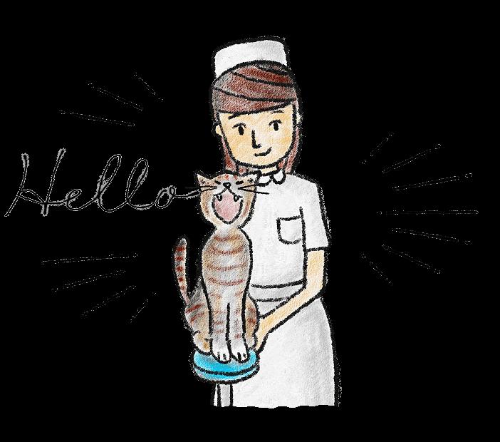 スタッフ&猫のイラスト