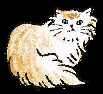 猫のイラスト(1)