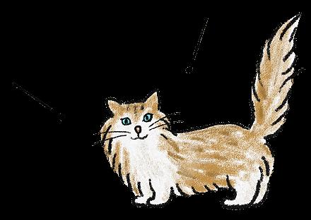 猫のイラスト(4)